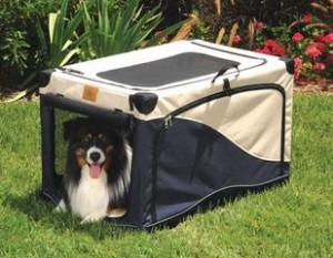 Dog kennel at dogIDs