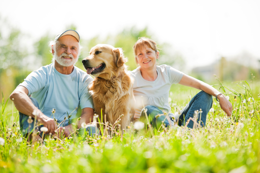 Pet Trusts: Providing for Fido After You Pass