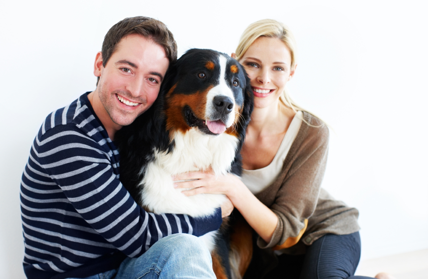 Top 10 Tips for Responsible Pet Ownership