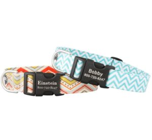 Chevron dog collars