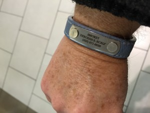 Customer Memorializes Dog With Custom Collar