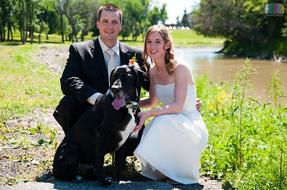 Tips For Including Your Dog In Your Wedding