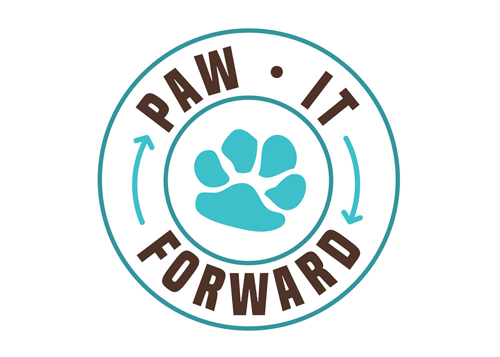 One Year of Pawing It Forward