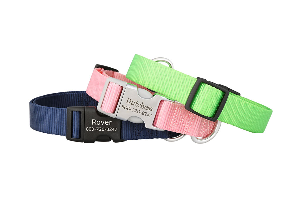 Personalized buckle nylon collars