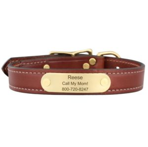 English Bridle Leather Collar with nameplate