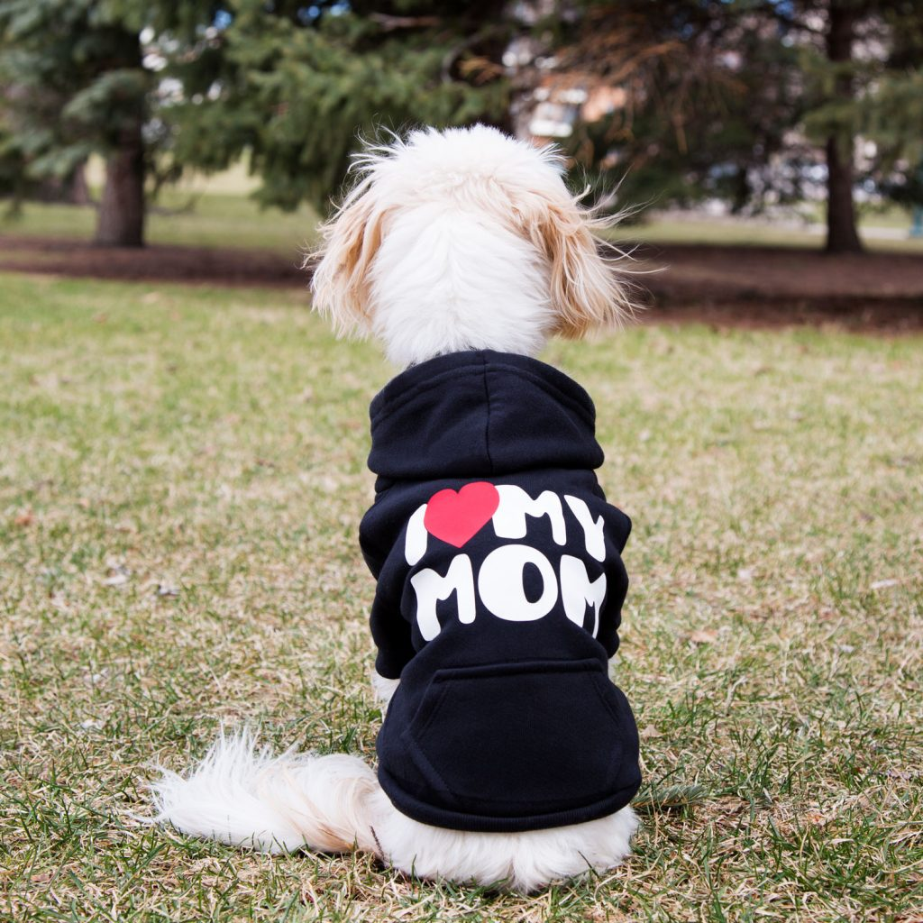 I Heart My Mom Hoodie From dogIDs