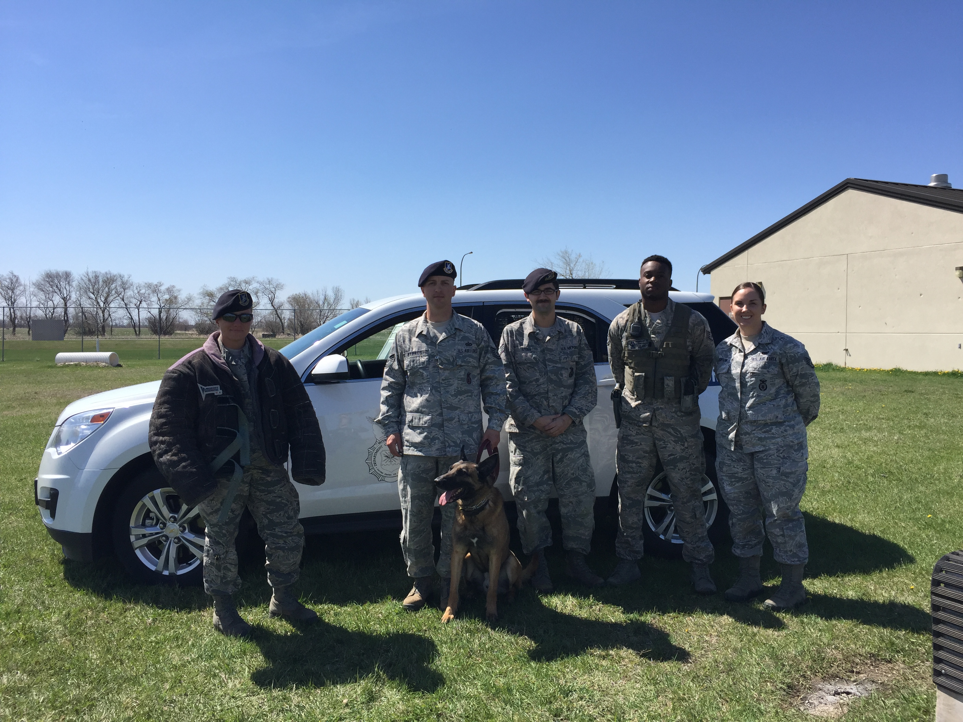 Our Military Dog Tour Guides