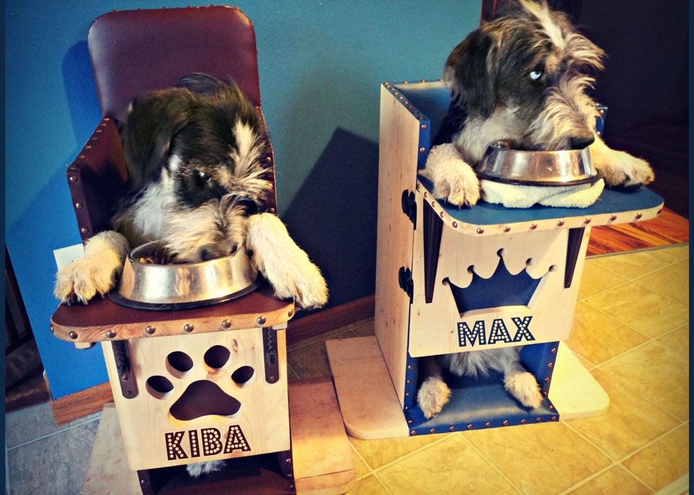 Max and Kiba eating in upright chairs