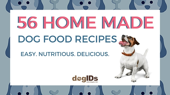 56 Homemade Dog Food Recipes