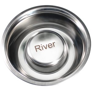 personalized stainless steel not so fast dog bowl