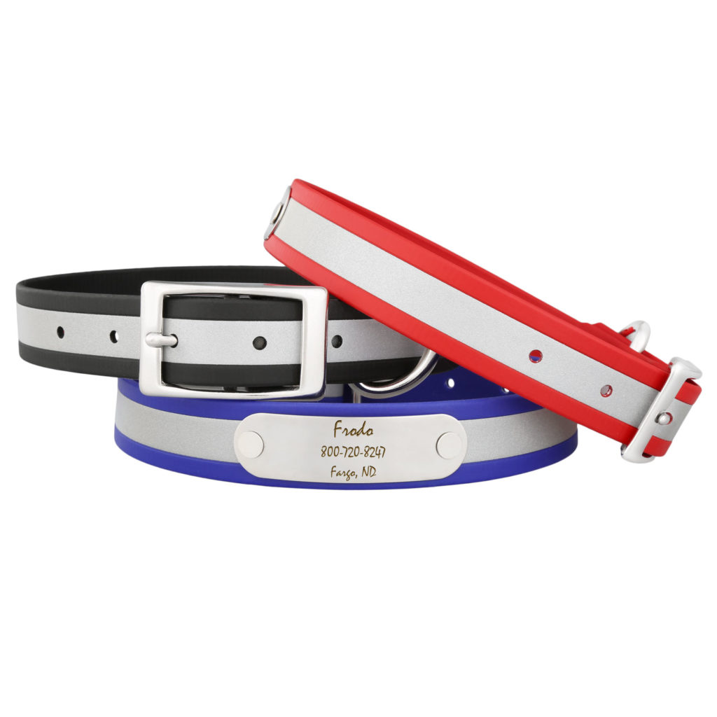 reflective-dog-collar-with-nameplate-group