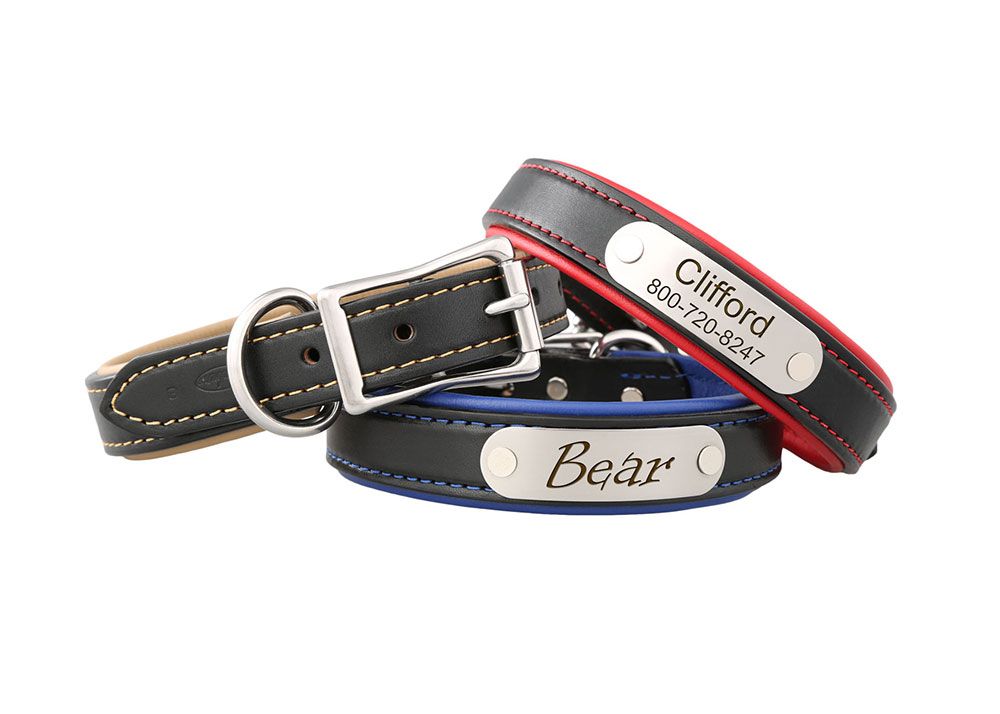 Padded Leather Nameplate collars
