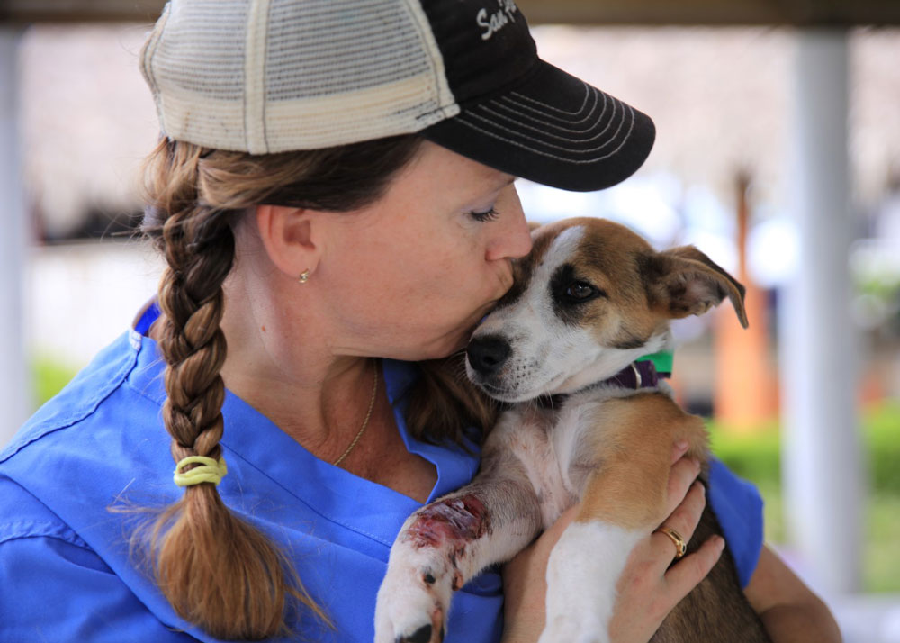 This Summer, Paw it Forward Internationally with World Vets