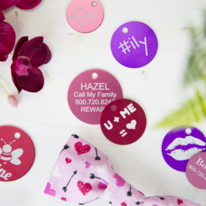 Valentine's Day Dog ID Tags