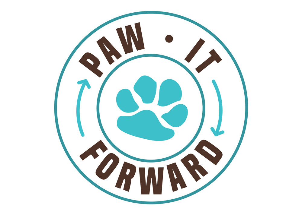 Improving the Lives of Dogs With Pawing It Forward