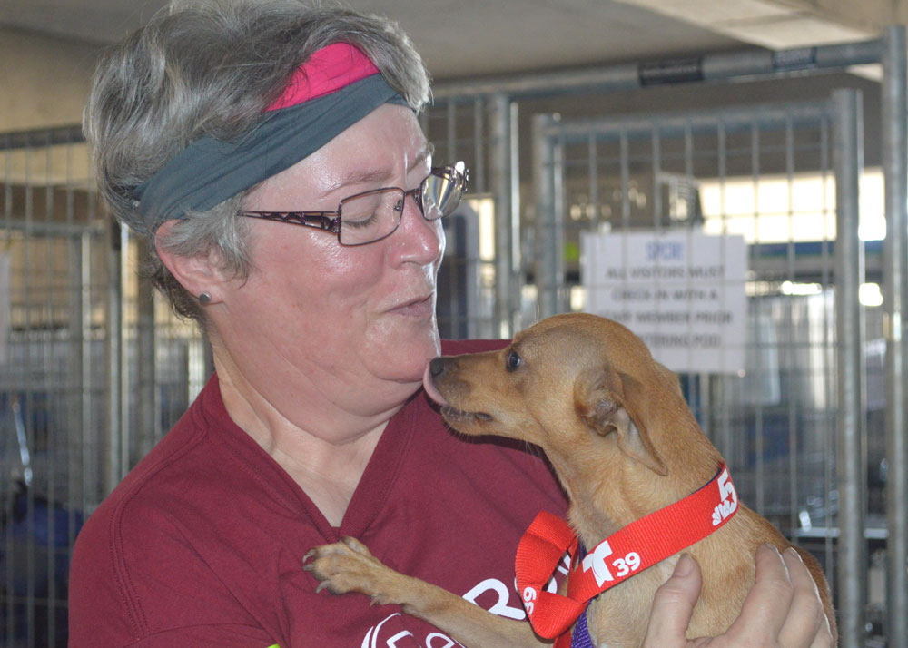 From Crisis to Care – Paw it Forward with RedRover