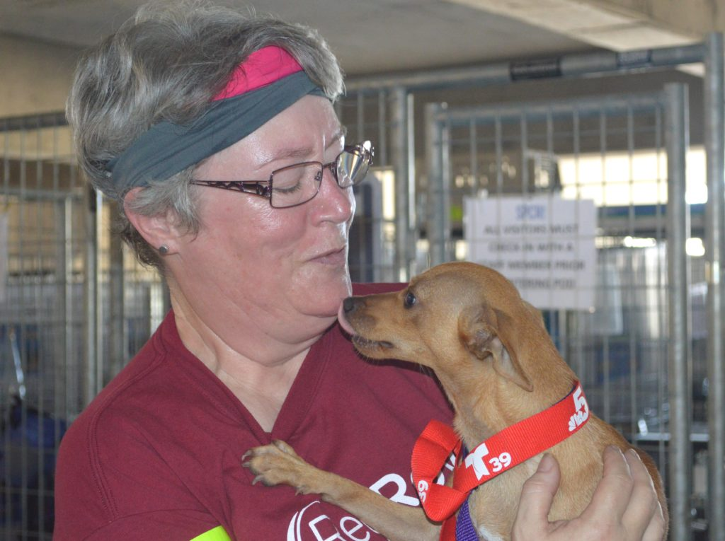 RedRover volunteer holding a dog