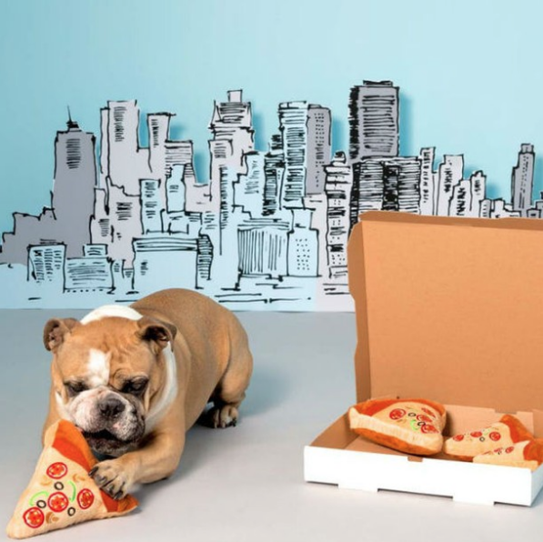 Dog playing with Pizza Toy - BarkBox
