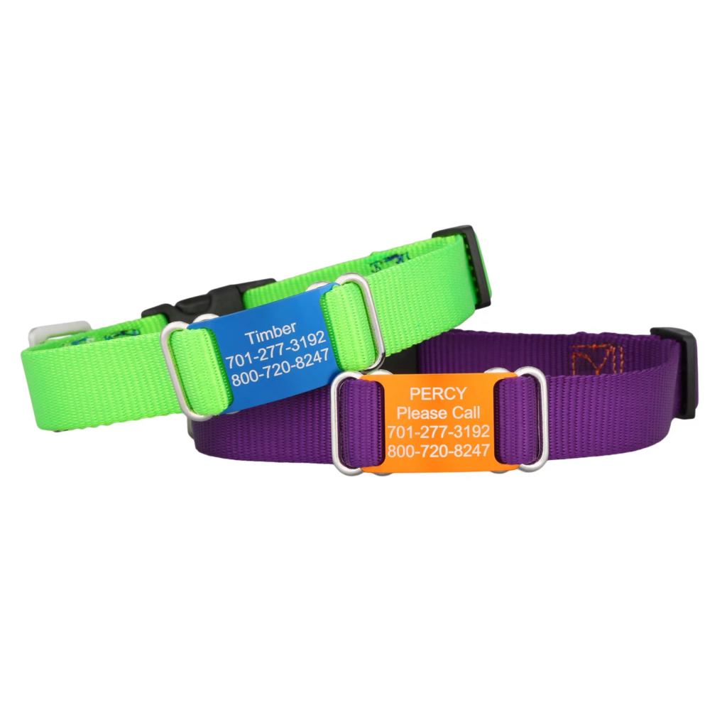 Nylon ScruffTag Dog Collars