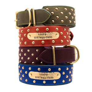 2 Inch Wide Dog Collars