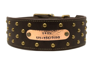2 Inch Wide Leather Collar