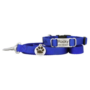 Puppy Collar and Leash